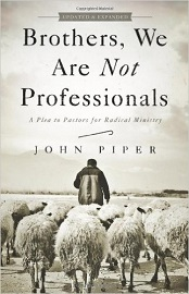 Brothers, Not Professionals 2 Resize Cover